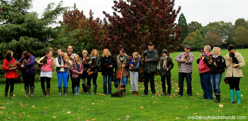 Horsham Dachshund Meet up- October 2012