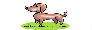 Mad About Dachshunds