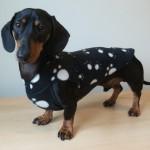 Debonair dachshunds Fleece Black PP 1